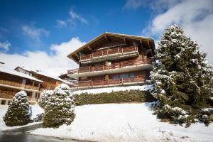 Apartment Ballettes, Apartmány  Verbier - big - 1