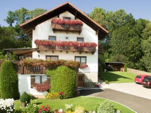 Ferienwohnungen Göstl - Apartment - Bodenmais