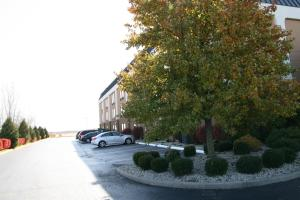 Hampton Inn Washington Court House - Hotel - Jeffersonville