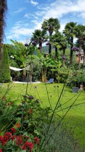 Ferienhaus im Palmengarten - AbcAlberghi.com