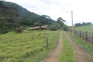 Fazenda Serra Verde Carangola, Guest houses  São Manuel de Carangola - big - 4