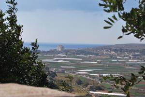 Secco's Seaview Accommodation, Homestays  Mġarr - big - 61