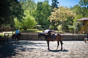 Val Salice Horses B&B - AbcAlberghi.com