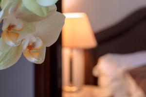 Hotel Cala Del Porto, Отели  Вибо-Валентия-Марина - big - 37
