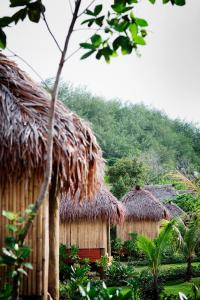 Likuliku Lagoon Resort (23 of 36)
