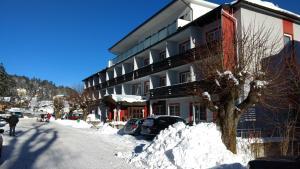 Hotel Thier - Feistritz am Wechsel