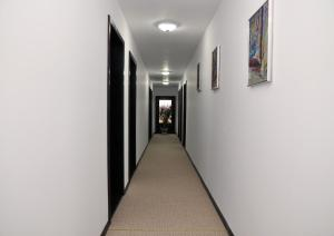 Pensiunea Almada, Guest houses  Vladimirescu - big - 17