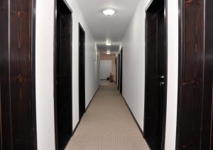 Pensiunea Almada, Guest houses  Vladimirescu - big - 19