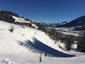 Franbichl - Apartment - Brixen im Thale