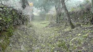 Los Montes, Kúriák  Casas de Miravete - big - 38