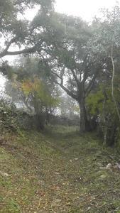 Los Montes, Kúriák  Casas de Miravete - big - 40