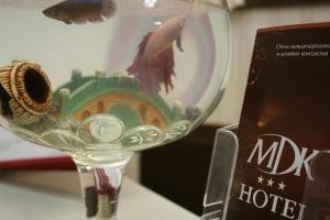 MDK Hotel, Hotely  Petrohrad - big - 46