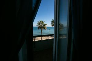 Le Palme, Bed and breakfasts  Trani - big - 4