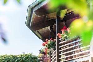 Ferienwohnungen Vomperberg - Apartment - Schwaz-Pill