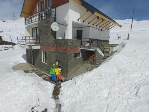 Mountain Cricket Chalets and Apartments Gudauri