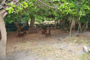 Supertubes Guesthouse, Penziony  Jeffreys Bay - big - 85