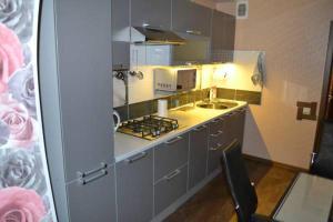 Apartment Ledovyy Dvorets on Rizhskiy prospekt - Pokrutische