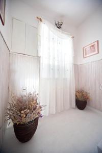 Apartments Vila Miranda, Apartmanok  Barbat na Rabu - big - 22