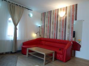 Casa Olguta - Apartment - Sinaia