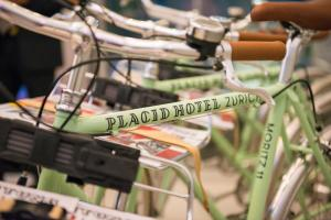 Placid Hotel Zurich (19 of 87)