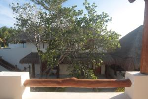 Tierra del Mar Hotel - Adults Only, Hotely  Ostrov Holbox - big - 10