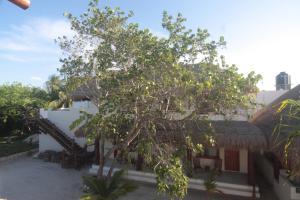 Tierra del Mar Hotel - Adults Only, Hotely  Ostrov Holbox - big - 13