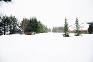 Pakaso sodyba Kirdeikiuose, Villas  Kirdeikiai - big - 31
