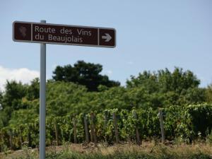 Villa - Chiroubles, Виллы  Chiroubles - big - 34