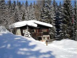 La Drossa - Apartment - Lenzerheide - Valbella