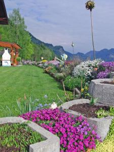 Haus Seehof, Guest houses  Sankt Gilgen - big - 47