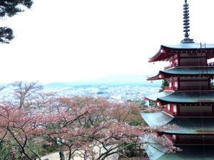 Hostel Mt. Fuji - FUKUYA, Hostelek  Fudzsijosida - big - 46