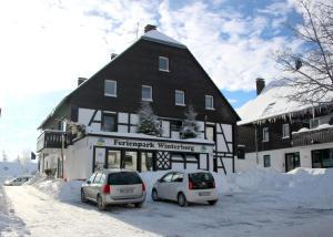 Ferienpark Winterberg, Ferienwohnungen  Winterberg - big - 12