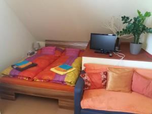 Albergues - Guest House Sherpa