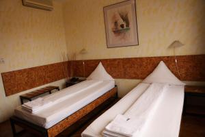 Hotel Central, Hotely  Temešvár - big - 50