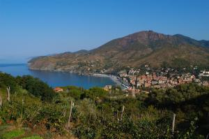B&B La Perla Blu, Bed and Breakfasts  Levanto - big - 18