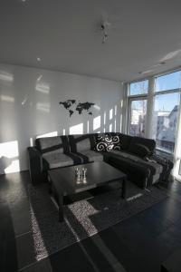 Loft Apartments - City Center - Reykjavík
