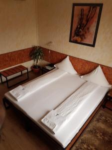 Hotel Central, Hotely  Temešvár - big - 55