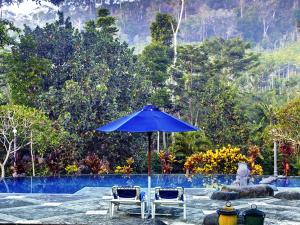 Margo Utomo Hill View Resort, Комплексы для отдыха с коттеджами/бунгало  Kalibaru - big - 27