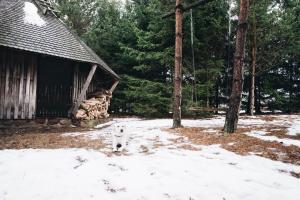 Pakaso sodyba Kirdeikiuose, Villas  Kirdeikiai - big - 44