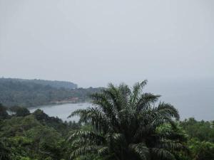 Roça Monte Forte, Farmy  Neves - big - 7