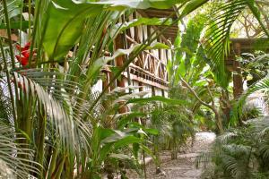 Canaima Chill House, Hotely  Santa Teresa Beach - big - 29