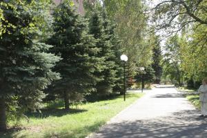 Санаторий Сосны, Москва