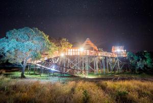 Pezulu Tree House Lodge - Hoedspruit