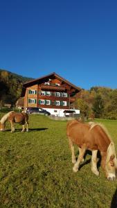 Apartmán Haus Silke Silbertal Rakousko