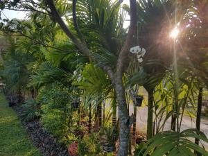 Villa Thakhek, Penziony  Thakhek - big - 207