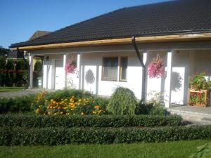 Cat Garden Riga Airport Apartments - Maziyeshi
