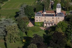 Château de Bellevue B&B, Bed & Breakfast  Villié-Morgon - big - 8