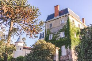 Château de Bellevue B&B, Bed & Breakfast  Villié-Morgon - big - 1