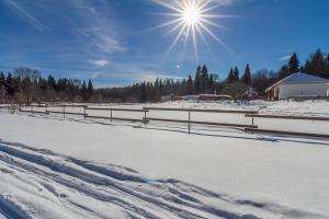 Kolhidskie Vorota Usadba, Farm stays  Mezmay - big - 176