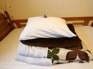 Hostel Fujisan YOU, Hostels  Fujiyoshida - big - 37